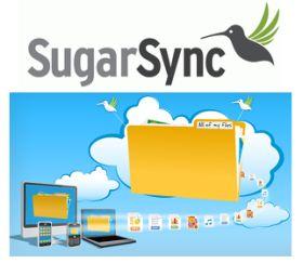 SugarSync Review